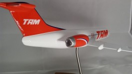 Aviao Fokker 100 - TAM MAQUETE